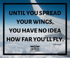 Aviation Quotes, Self Improvement, Social Media, Passion, Craft, Tattoos, Ideas, Hand Crafts, Creative Crafts