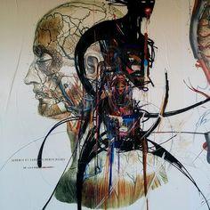 Stéphane carricondo, Streetart, Urbacolors