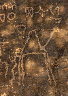 Camel on rock carving site in Abar Hima - Saudi Arabia
