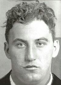 Meyer Shapiro