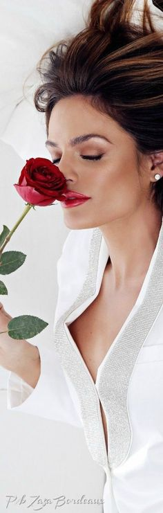 Beautiful Roses, Most Beautiful, Red And Pink, Red And White, Single Rose, Love Rose, Shades Of Red, White Fashion, Red Roses