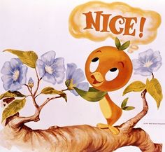 Orange Bird: Mascot to Fan Favorite orange bird - Orange Things Orange Bird: Mascot To Fan Favorite Disney Insider, Disney Kunst, Disney Art, Walt Disney, Disney Ideas, Disney Stuff, Disney Magic, Orange Bird, Orange Orange