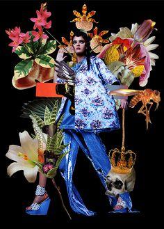 As colagens de moda de Ashkan Honarvar & Danil Golovkin