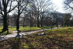 The swoonable Prospect Park