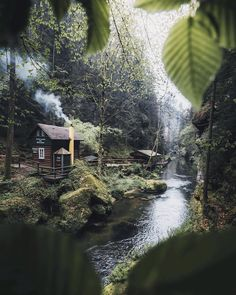 More How About Spend Some Days In This Heaven Spot #wildcamping #campinglife #camping #campingvibes #campingtime #survival #shelter #ourcamplife #forest #camp #wilderness #adventure #outdoors #outdoorlife #cabin #adventure #nature #explore #survival #bushcraft