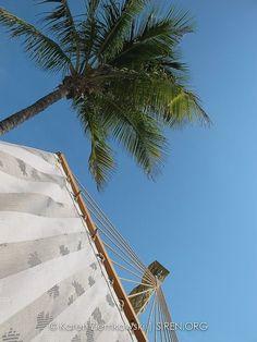The Florida Keys: Make a wish: Florida Keys Lifestyle > by , the Florida website! by MySoBe.com, the website of Miami!