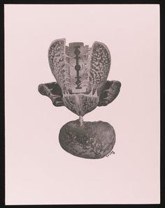 Annie Le Brun | Lot | Sotheby's