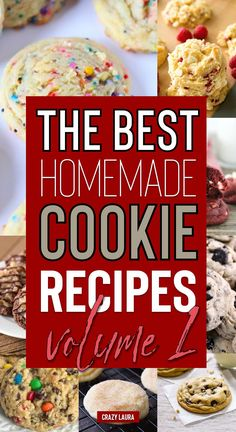 Looking for a new delicious homemade cookie recipe? These 17 amazing recipe ideas will give you the inspiration you need! Best Homemade Cookie Recipe, Fall Cookie Recipes, Cookie Dough Recipes, Homemade Cookies, Cookie Desserts, Brownie Recipes, Cookie Cakes, Bar Recipes, Brownie Cookies