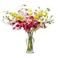 Flowers Delivery to India, Flowers Basket to India, Send Diwali Flowers India Diwali Flowers, Send Flowers, Online Flower Shop, Flowers Online, Orchid Vase, Orchids, Cake Online, Diwali Gifts, Flower Basket