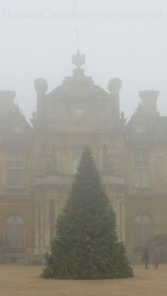 The Magical Christmas Wreath Company: Christmas at Waddesdon Manor, Bucks