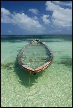 Photograph by Bill Curtsinger, Desroches Island, Seychelles.