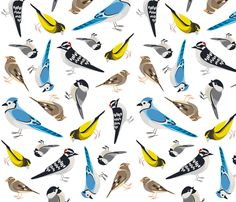 Ontario Bird Scatter fabric by bucketface on Spoonflower - custom fabric