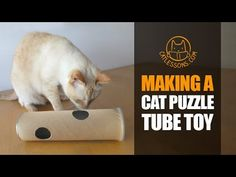 Cats love puzzle boxes that challenge their predatory instincts. Here's a simple idea you can make with a potato chip can. Music: 'Santo Rico' by Twin Musico. Cat Hug, Dog Cat, Cat Site, Getting A Kitten, Diy Cat Toys, Cat Drinking, Catnip Toys, Cat Nails, Cat Room