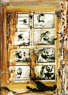 Charging Lion almost killed Peter Beard, but he had to get the photos!