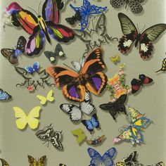 butterfly parade - platine