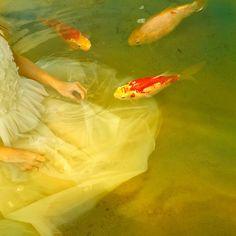 """kafkasapartment: """"Catching Koi, 2013. Tom Chambers. Pigment print """""""