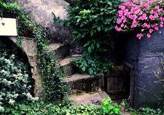 "Title: ""Like fairytail"". Old backyard"