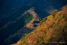 https://flic.kr/p/BUVEEt | 射す光 | 一度行ってみたかったナメゴ谷。朝日が当たる場所がとても輝いて見えました。
