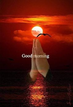 Morning Is A Perfect Time morning good morning morning quotes good morning… – BuzzTMZ Good Morning Clips, Good Morning Sister, Good Morning Saturday, Good Morning Prayer, Good Morning Sunshine, Good Morning Good Night, Morning Morning, Good Morning Picture Messages, Good Morning Beautiful Pictures