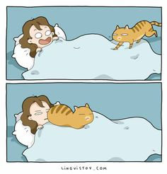 Take a look at these paw-some comics that purr-fectly capture what it's like to live with a cat.