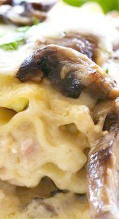 Chicken Spinach Mushroom Alfredo Roll Ups