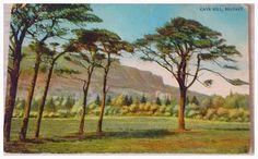 Vintage 1904 Cave Hill Belfast Vintage Postcard. Vintage 1904 Postcard .Vintage Gift . by TinkerbellVintage on Etsy