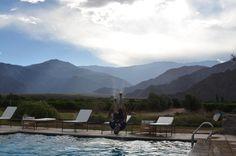 After tasting the wine, swimming pool jump at Cafayate, Salta, Argentina.