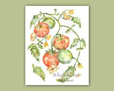 Tomato, kitchen art, Tomato print, Kitchen Watercolor, Kitchen Painting, Gift for Gardener, Print for Kitchen, Fruit Watercolor Painting