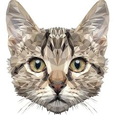 Example for a cat tattoo Art And Illustration, Illustrations, Polygon Art, Photo Chat, Cat Design, Design Lab, Design Model, Design Trends, Animal Faces