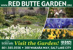I Heart Salt Lake: Celebrate Spring and Sunshine at Red Butte Gardens