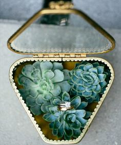 Birds of a Feather Events - Dallas/Fort Worth - glass ring box - ring bearer ideas