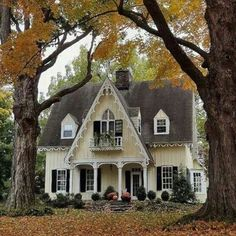 Happy Sunday friends  This real life ginger bread house is to die for! If anyone knows where it's located I'd love to know. The details are so pretty!