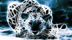 fractal animals | 14972_Animal_Animal_-_Fractal_Wallpaper.jpg
