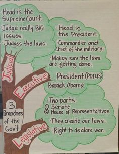 3 Branches of the Government