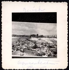 Bergen Belsen death camp, Germany, Bodies lying near barbed wire fences, after the liberation.