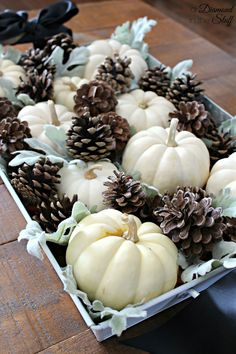 Pumpkins and Pinecones Centerpiece   A Diamond in the Stuff