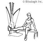 Bowflex Seated Hip Adduction leg exercise