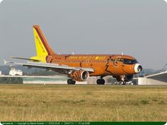 avions_peints_004