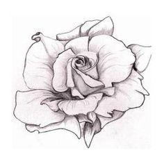 White Rose by Mary Simms White Rose by Mary Simms Rose Drawing Tattoo, Realistic Rose Tattoo, Tatoo Art, Tattoo Drawings, White Rose Tattoos, Black And Grey Tattoos, Tatoo Simple, Crucifix Tattoo, Dragon Ball