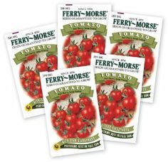 Ferry Morse Tomato, 5-Pack by Ferry Morse. $7.08. Vegetable garden. Large fruited red cherry tomato. 5 packets of the same variety. Large fruited red cherry tomato---many people want several packets of this delicious tomato. Plant extras and show your neighbors what a gardener you are. Substitutions may be made for varieties that are out of stock. Save 21%!