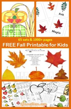 65 sets Free Fall Printables for Kids, with many learning subjects: fine motor, color, number, letter, spelling, science, ...