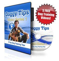 Dog Trick Training Tips : Myths About Dog Training Breeds