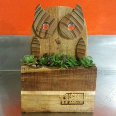 Wee planter box from pallets
