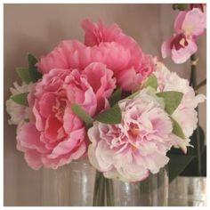Bouquet de Pivoines Roses Décoration Romantique.