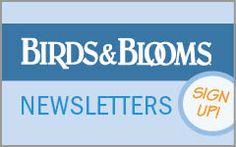 Birds & Blooms Magazine: Flowers, Birds, Hummingbirds & Butterflies | Birds & Blooms