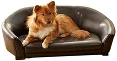 Special Offers - Enchanted Home Pet Winston Sofa Bed 40 by 25 by 15-Inch Brown - In stock & Free Shipping. You can save more money! Check It (August 27 2016 at 04:18AM) >> http://doghousesusa.net/enchanted-home-pet-winston-sofa-bed-40-by-25-by-15-inch-brown/