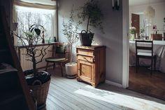 Serenity in chasing shadows, gray, plant life, natural wood.  lisa mars (1 av 17)