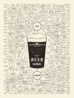 Learn different kinds of beer in the world with one simple infographic.