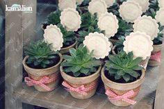 Recuerdos / Giveaways / Detalles Personalizados / Vintage / Bautizo / It's a girl / Rosa / Pink / Mini Macetas / Plant / Suculenta / Flower pot / Favor.