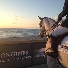 Equit Carlos and Alexandra Cherubini spent a moment taking in the view during their morning warm-up at the Longines Global Champions Tour of Miami Beach. Photo by Molly Sorge/The Chronicle of the Horse
